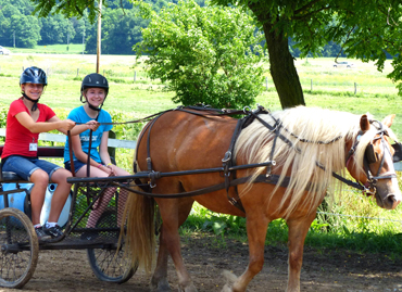 Horseback riding in bellefontaine ohio